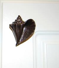 conch shell cabinet knob - brushed nickel finish - right facing