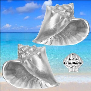 conch shell cabinet knobs