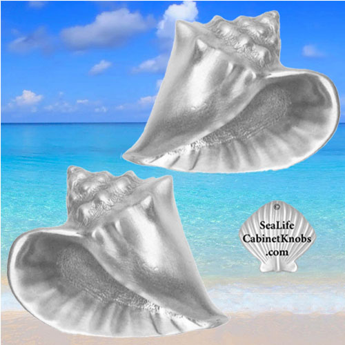 Conch shell cabinet knobs for your coastal and island decor